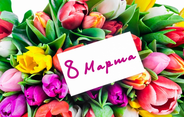 fresh-love-colorful-romantic-tiulpany-tulips-buket-flowers-8.jpg