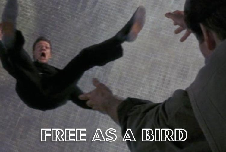 free_as_a_bird.jpg
